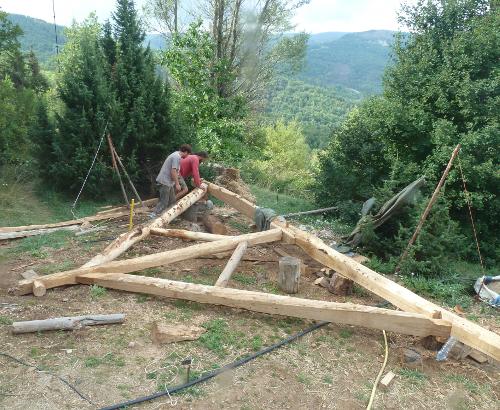 charpente bois naturel